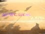 speCSEr-2K19